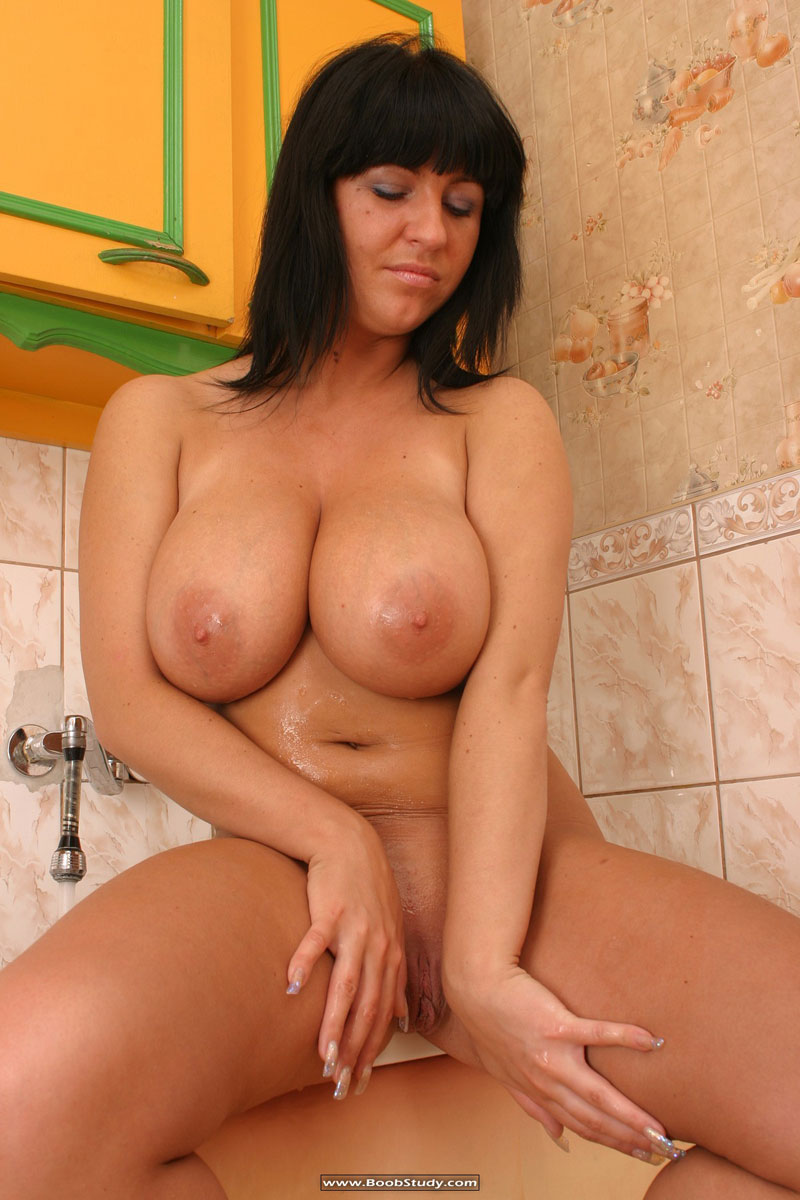 http://galleries.boobstudy.com/photo/121/media/big-gorgeous-hooters-015.jpg